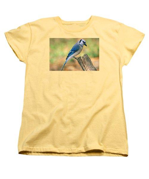 Blue Jay Women's T-Shirt (Standard Cut) by Millard H. Sharp