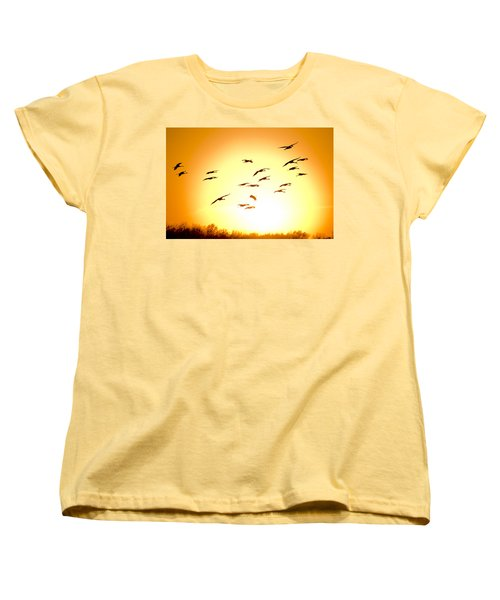 Migration Women's T-Shirt (Standard Cut) by Alexey Stiop