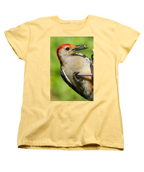 Red Bellied Woodpecker Women's T-Shirt (Standard Cut) by Robert L Jackson