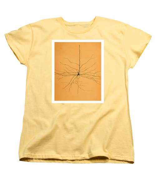 Pyramidal Cell In Cerebral Cortex, Cajal Women's T-Shirt (Standard Cut) by Science Source
