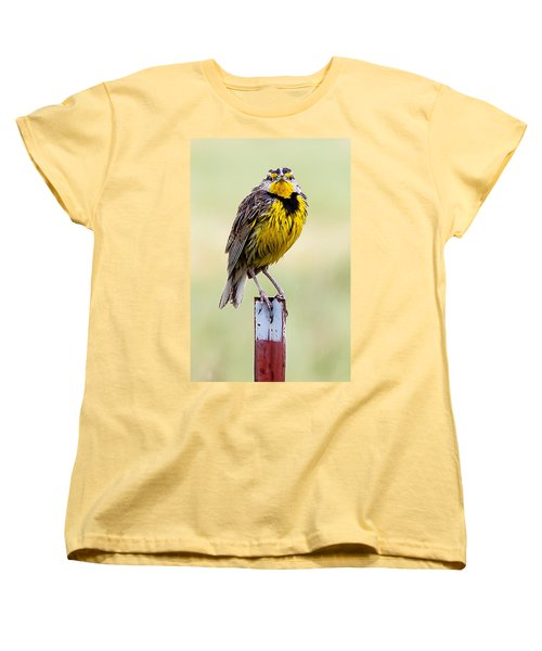 A Little Wet Women's T-Shirt (Standard Cut) by Brian Williamson