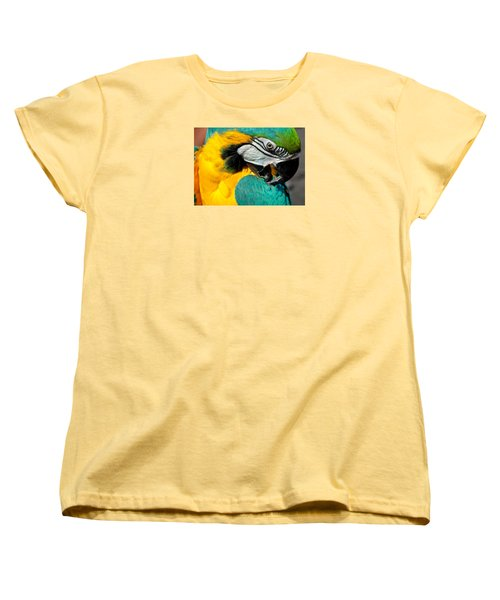 Blue And Yellow Macaw  Women's T-Shirt (Standard Cut) by Venetia Featherstone-Witty