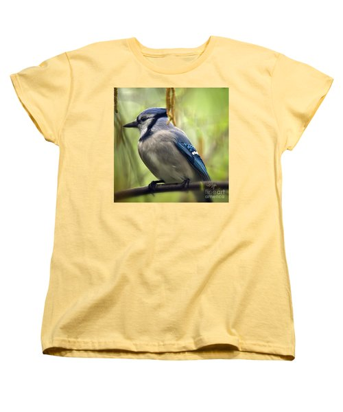 Blue Jay On A Misty Spring Day - Square Format Women's T-Shirt (Standard Cut) by Lois Bryan