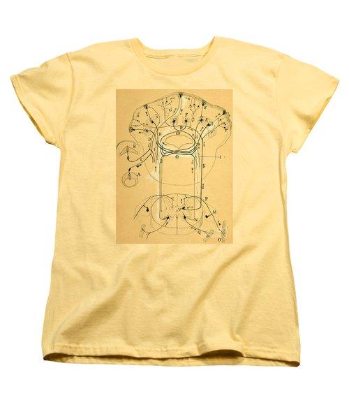 Brain Vestibular Sensor Connections By Cajal 1899 Women's T-Shirt (Standard Cut) by Science Source