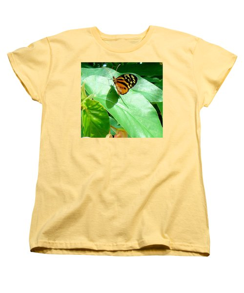 Women's T-Shirt (Standard Cut) featuring the photograph Butterfly Chasing Shadow by Janette Boyd