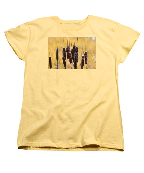 Cat Tails In November Women's T-Shirt (Standard Cut) by Bruce Patrick Smith