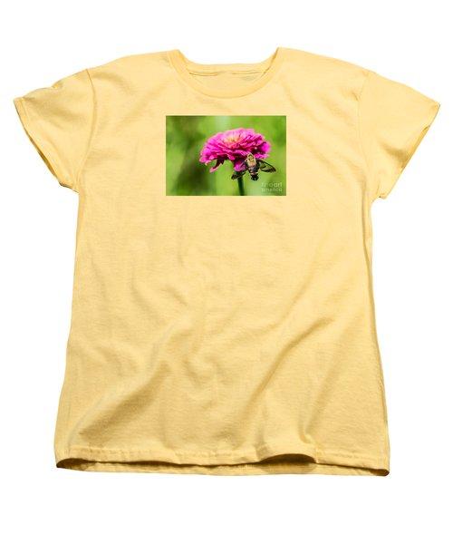 Clearwing Moth Women's T-Shirt (Standard Cut) by Debbie Green