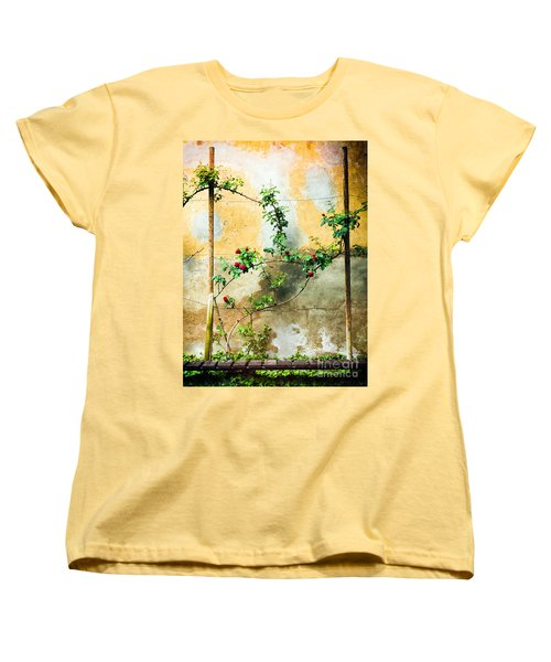 Women's T-Shirt (Standard Cut) featuring the photograph Climbing Rose Plant by Silvia Ganora
