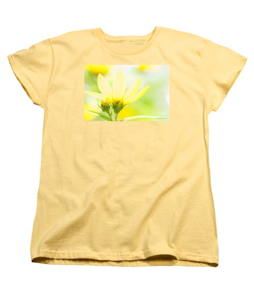 Daisies In The Sun Women's T-Shirt (Standard Cut) by David Perry Lawrence