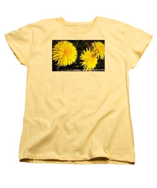 Dandelion Weeds? Women's T-Shirt (Standard Cut) by Martin Howard