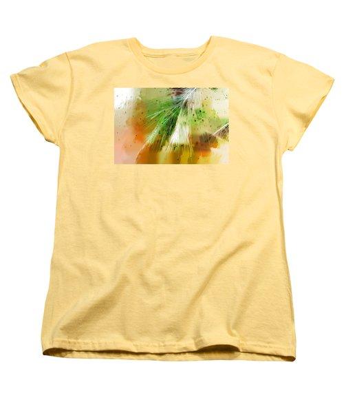 Earth Silk Women's T-Shirt (Standard Cut)