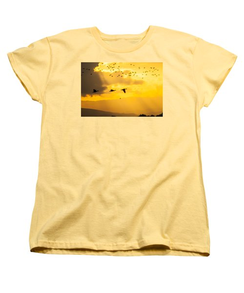 Geese At Sunset-2 Women's T-Shirt (Standard Cut) by Brian Williamson
