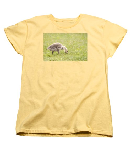 Women's T-Shirt (Standard Cut) featuring the photograph Gosling by Jeannette Hunt