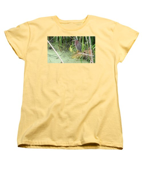 Women's T-Shirt (Standard Cut) featuring the pyrography Green Heron by Ron Davidson