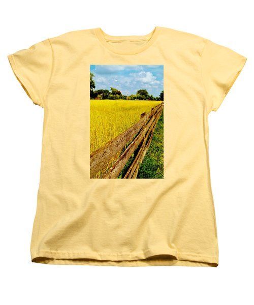 Growing History Women's T-Shirt (Standard Cut) by Daniel Thompson