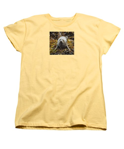 Harbor Seal Women's T-Shirt (Standard Cut) by Alice Cahill