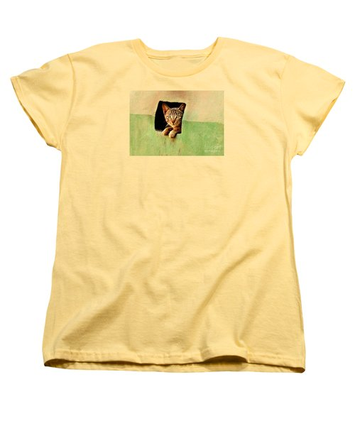 It Is My Home Women's T-Shirt (Standard Cut) by Manjot Singh Sachdeva