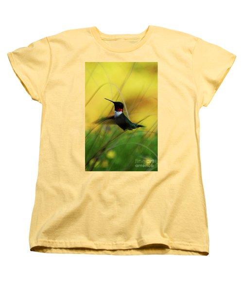 Just Flying Women's T-Shirt (Standard Cut)