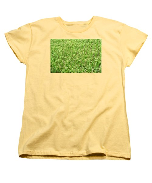 Women's T-Shirt (Standard Cut) featuring the photograph Paddy Field by Yew Kwang