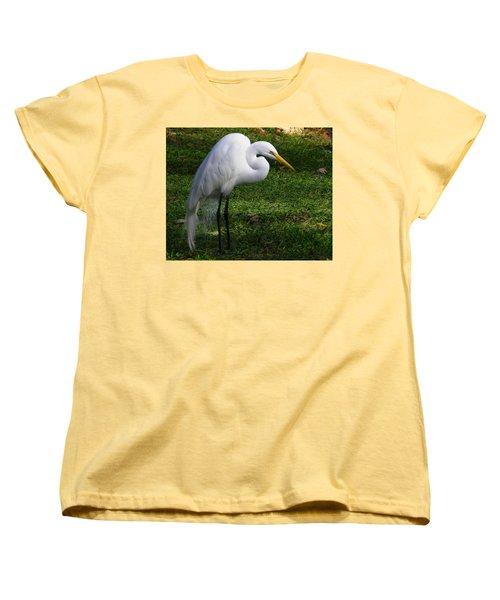 Posing Prettily Women's T-Shirt (Standard Cut) by Judy Wanamaker