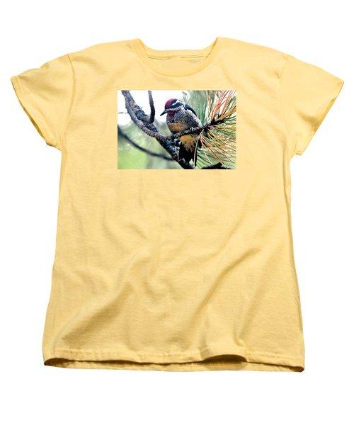 Red-naped Sapsucker On Pine Tree Women's T-Shirt (Standard Cut) by Marilyn Burton
