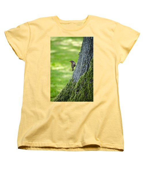 Robin At Rest Women's T-Shirt (Standard Cut) by Spikey Mouse Photography