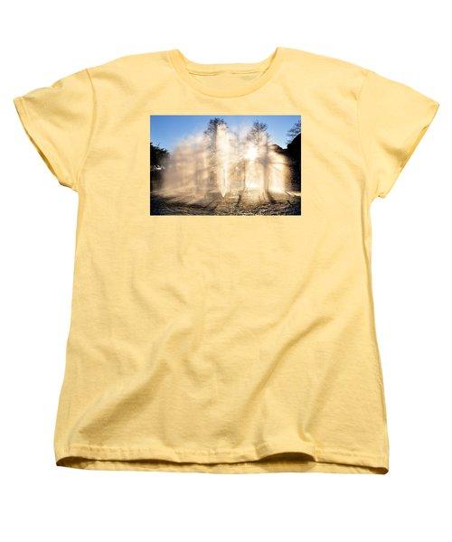 Shadow Play Women's T-Shirt (Standard Cut) by Charlotte Schafer