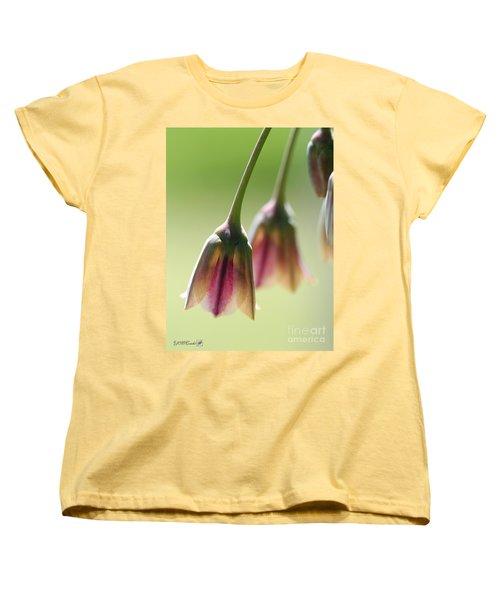 Sicilian Honey Garlic Women's T-Shirt (Standard Cut) by J McCombie