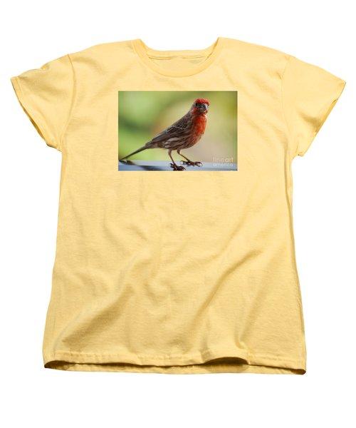 Small Brown And Red Bird Women's T-Shirt (Standard Cut) by DejaVu Designs
