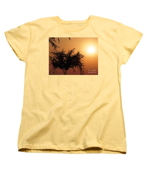 Soft Sunrise Women's T-Shirt (Standard Cut) by Meghan at FireBonnet Art