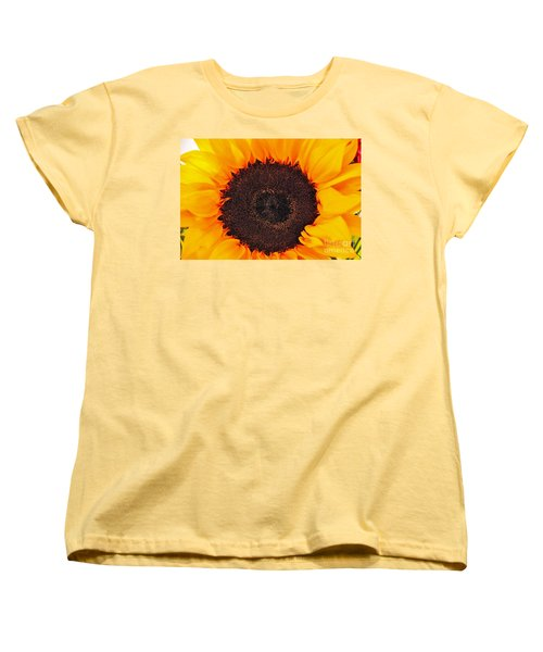Sun Delight Women's T-Shirt (Standard Cut) by Angela J Wright