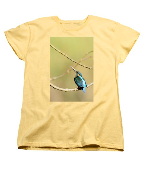 The Common Kingfisher Women's T-Shirt (Standard Cut) by Fotosas Photography