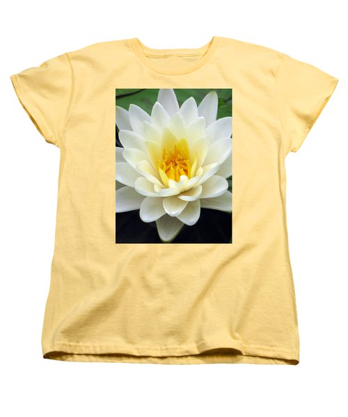 Women's T-Shirt (Standard Cut) featuring the photograph The Water Lilies Collection - 03 by Pamela Critchlow