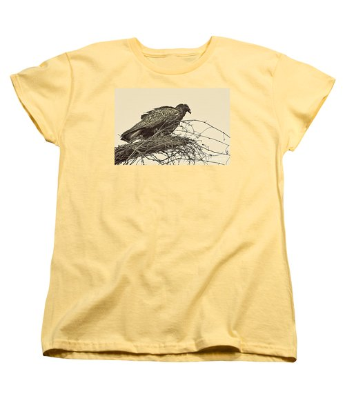 Turkey Vulture V2 Women's T-Shirt (Standard Cut) by Douglas Barnard