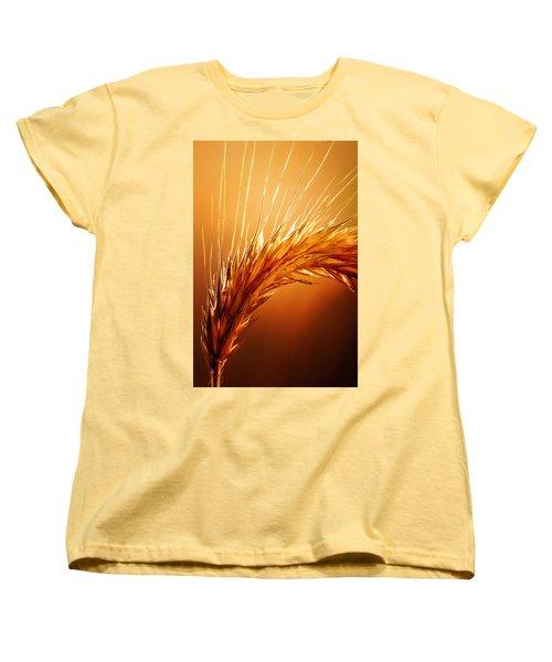 Wheat Close-up Women's T-Shirt (Standard Cut) by Johan Swanepoel