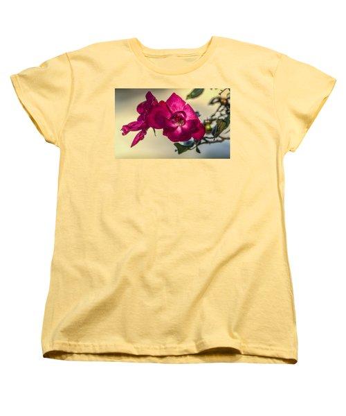 Wild Rose Women's T-Shirt (Standard Cut) by Jane Luxton