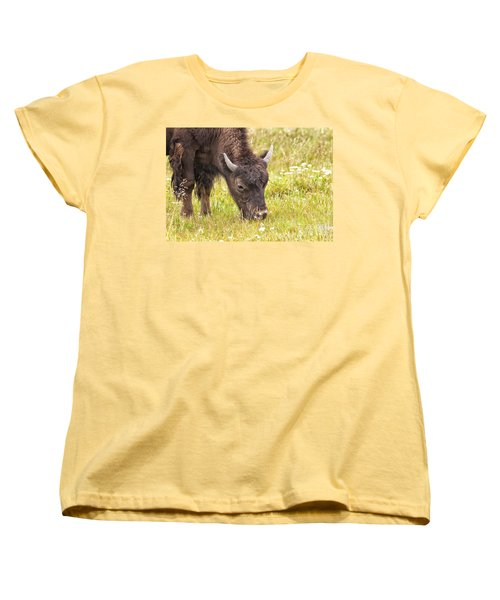 Young Bison Women's T-Shirt (Standard Cut) by Belinda Greb