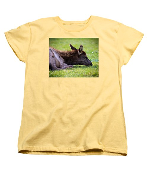 Baby Elk Women's T-Shirt (Standard Cut) by Steve McKinzie