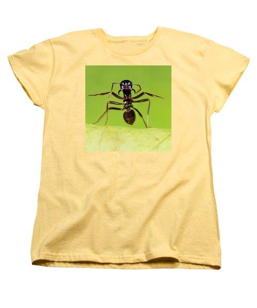 Japanese Slave-making Ant Polyergus Women's T-Shirt (Standard Cut) by Satoshi Kuribayashi