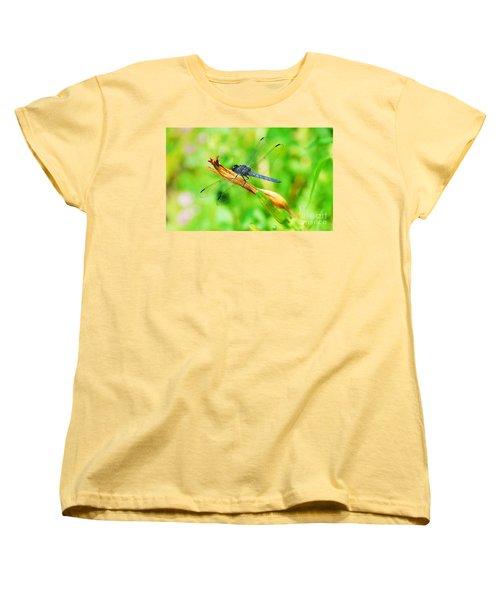 Lace Wings Women's T-Shirt (Standard Cut) by Cindy Manero