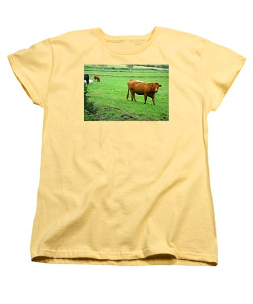 Women's T-Shirt (Standard Cut) featuring the photograph Red Cow by Charlie and Norma Brock