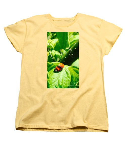 Women's T-Shirt (Standard Cut) featuring the photograph  Ladybugs In Love - No. 2016 by Joe Finney