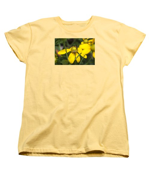 Green Headed Coneflowers Painted Women's T-Shirt (Standard Cut) by Rich Franco