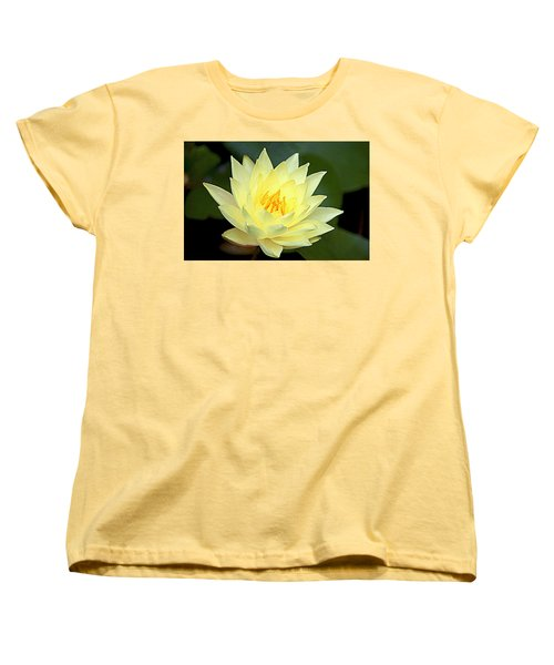 Lily Women's T-Shirt (Standard Cut) by Jerry Cahill