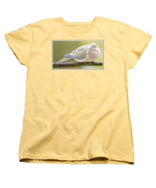 Mourning Dove On Tree Branch Women's T-Shirt (Standard Cut) by A Gurmankin