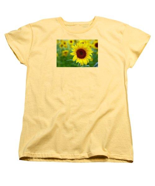 Sunflower Time Women's T-Shirt (Standard Cut) by Karen McKenzie McAdoo