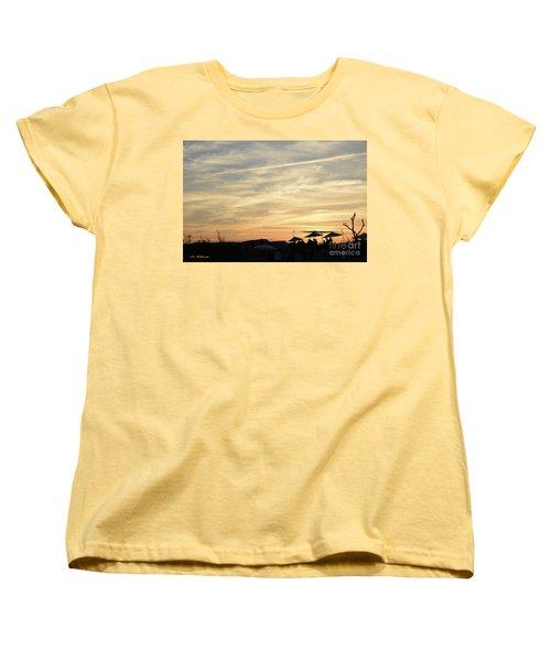 Sunset View Women's T-Shirt (Standard Cut) by Arik Baltinester