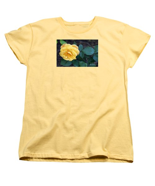 Yellow Rose Women's T-Shirt (Standard Cut) by Debra Crank