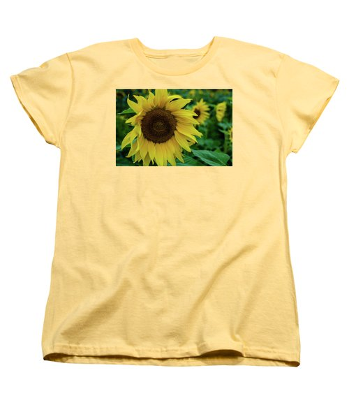 Sunflower Fields Women's T-Shirt (Standard Cut) by Miguel Winterpacht