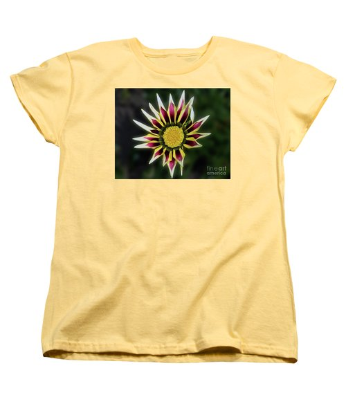 Women's T-Shirt (Standard Cut) featuring the photograph Nice Gazania by Elvira Ladocki
